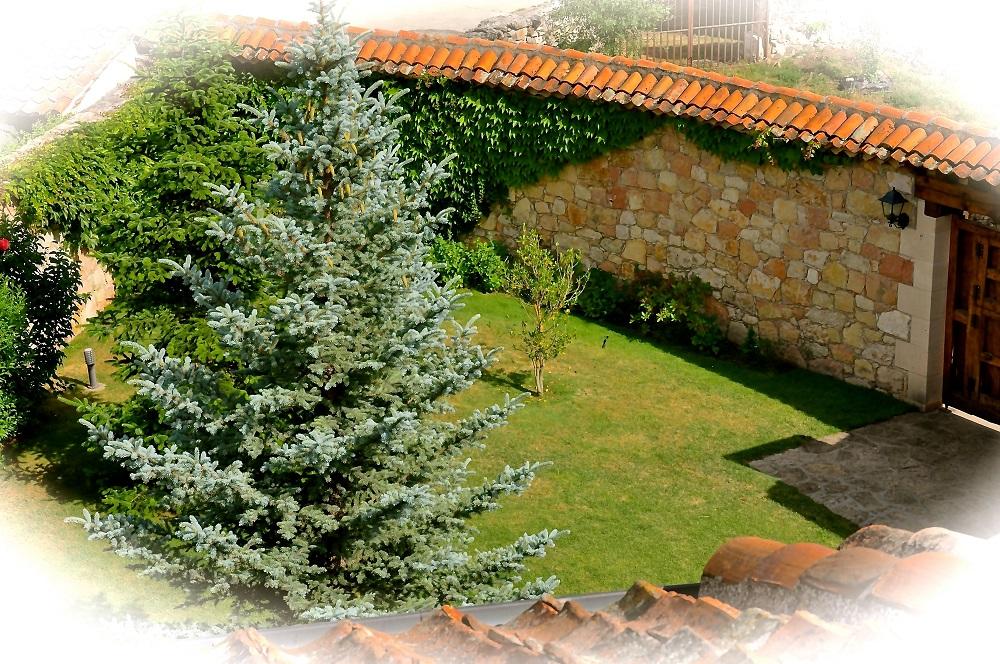 Jardin Exterior Casa Rural La Cantañera Cañicosa Segovia Pedraza